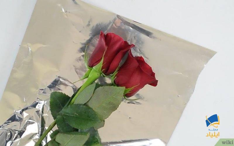 انتخاب تازهترین گلها