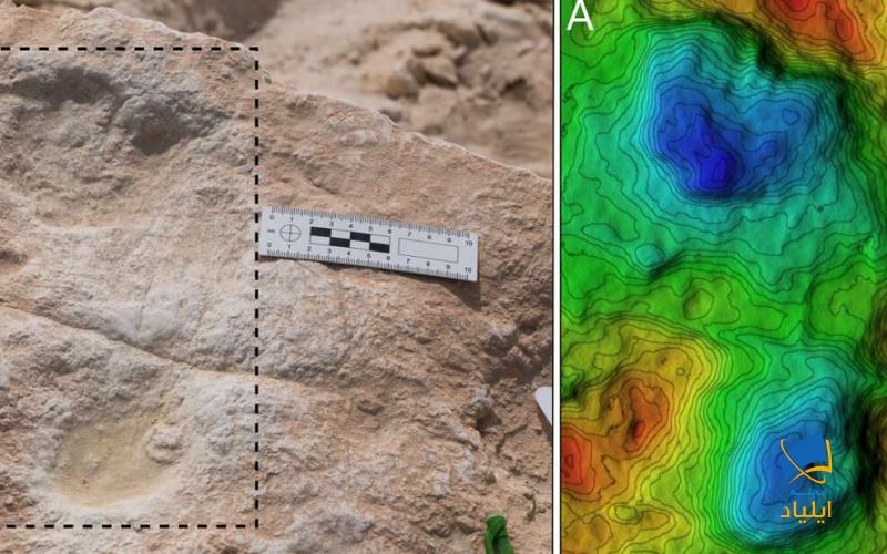 کشف قدیمیترین رد پا، خارج از آفریقا