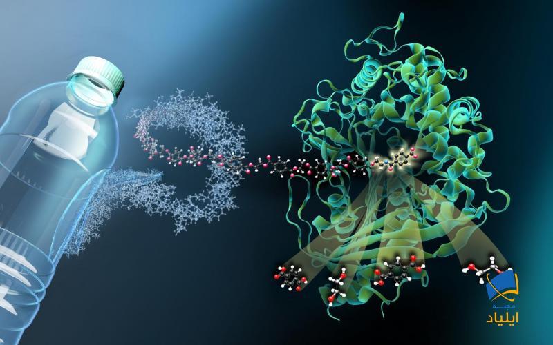 آنزیمی که باعث تجزیهی پلاستیک میشود