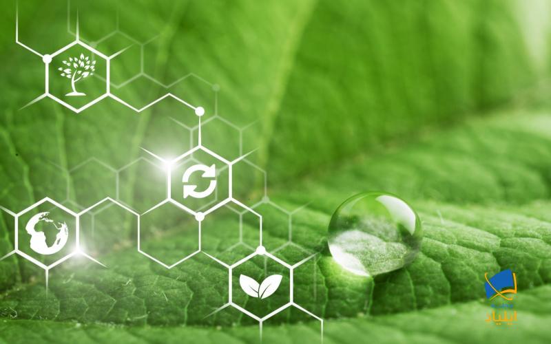 شیمی سبز و سوخت زیستی