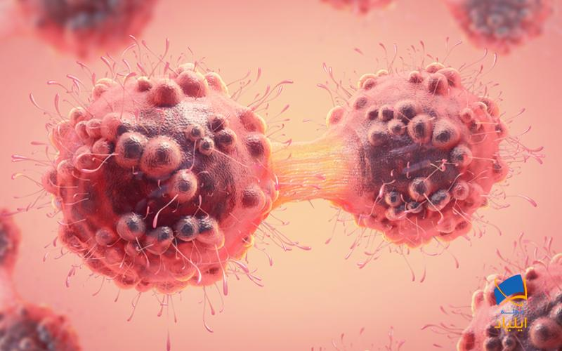 بهینهسازی سیستم ایمنی برای مقابله با سرطان