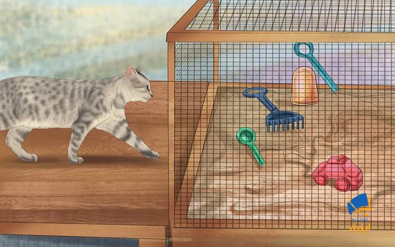 جلوگیری از گرفتن انگل از مدفوع گربه