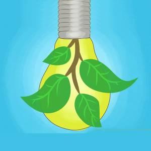 چگونه به حفظ محیط زیست کمک کنیم؟
